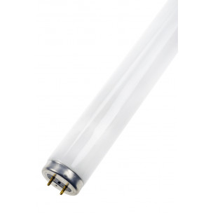 8714681262733 TL-buis 30W G13 Blacklight UV-A
